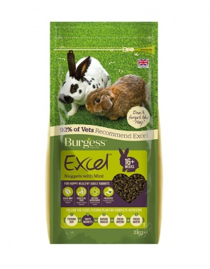 Excel Rabbit